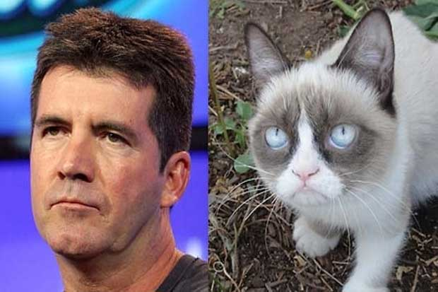 Simon Cowell vs. Grumpy Cat