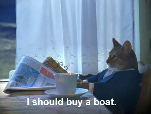 Cats Who Think They Are Extremely Successful Businessmen