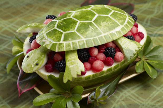 http://cdn.morefm.co.nz/morefm/AM/2013/1/18/5677/fruit_animal_16_turtle_watermelon.jpg