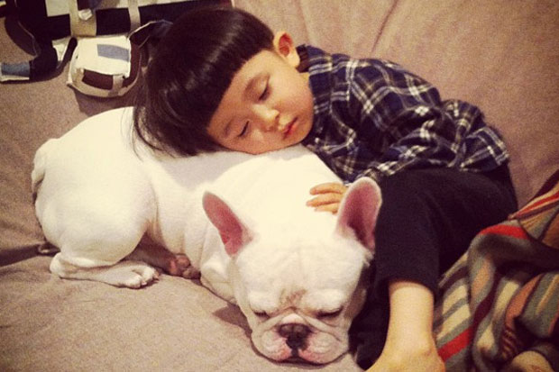 Boy and Bull Dog Are Best Friends - Fun Gallery - Fun - MORE FM