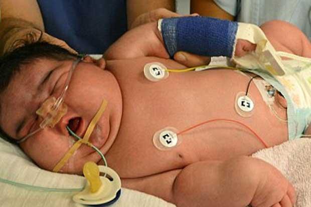 heaviest_baby_ever_born.jpg