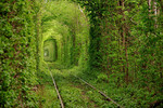 Tunnel Of Love, Kleven, Ukraine