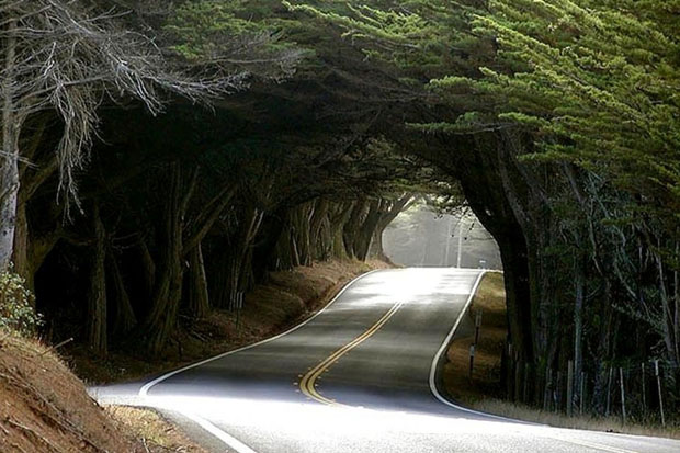 Mendocino County, California