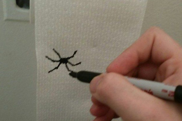 Add little bug drawings to your toilet roll to give y