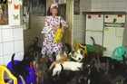 Woman Lives With 130 Cats In Her Apartment
