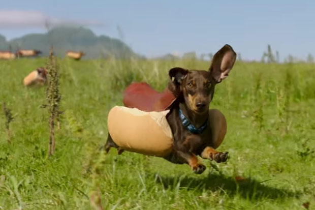 "This ""Hot Dog"" stampede is this year's favourite Super Bowl commercial"