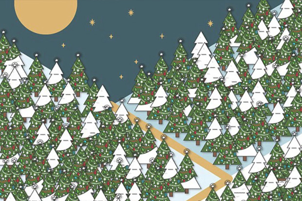 Quiz: Can you spot the elf among the Christmas trees?