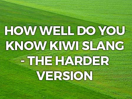 QUIZ: How well do you know New Zealand slang - the harder version
