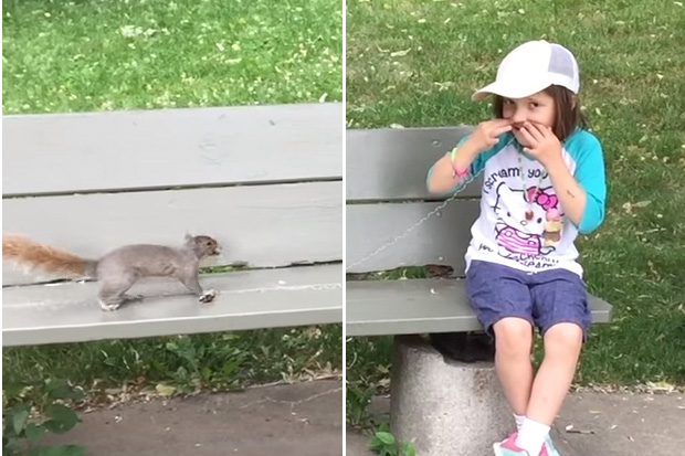 Dad uses wild squirrel to pull out his daughter's tooth