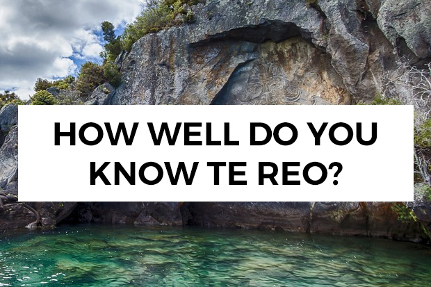 QUIZ: How well do you know Te Reo?