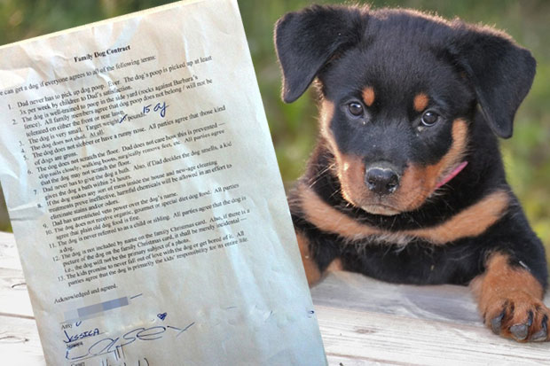 Dad writes hilarious contract for kids desperate for a family dog