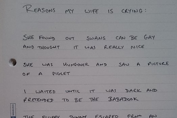 Man writes down all the reasons why his wife cried in one day