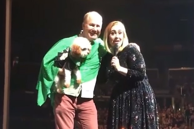 Adele stops concert to bring a dog up on stage