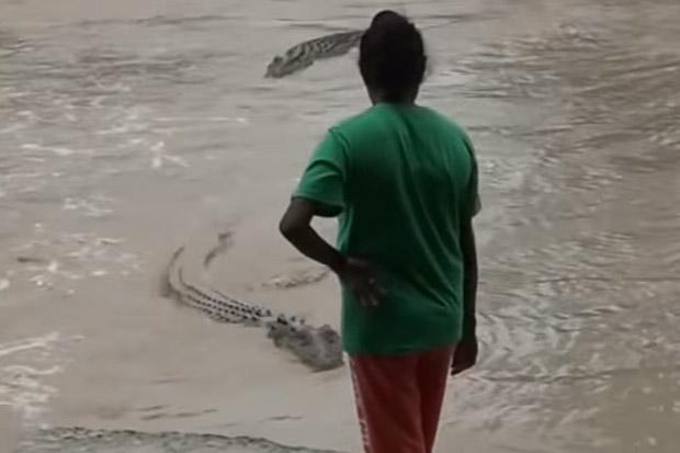 Aussie woman slaps jandal at approaching crocodile
