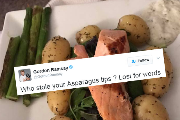 Gordon Ramsay serves up harsh reviews of people's homemade meals